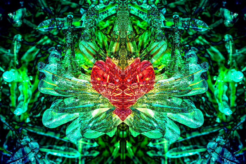 20201014-_DSC4954-Mirror-3-5.jpg