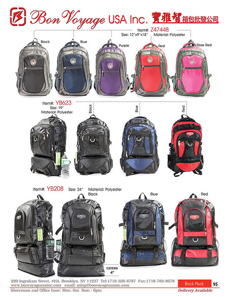 BackPack p95-X2.jpg