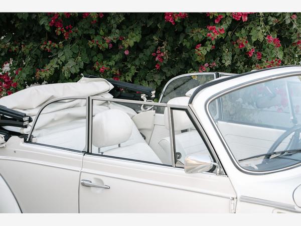 1979-Volkswagen-Beetle-import-classics--Car-101236744-02bb9096811f352863e16b12a1b07a42.jpg