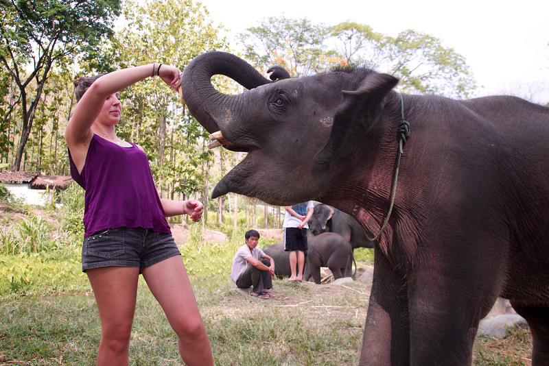 Roewe_Thailand 137.jpg