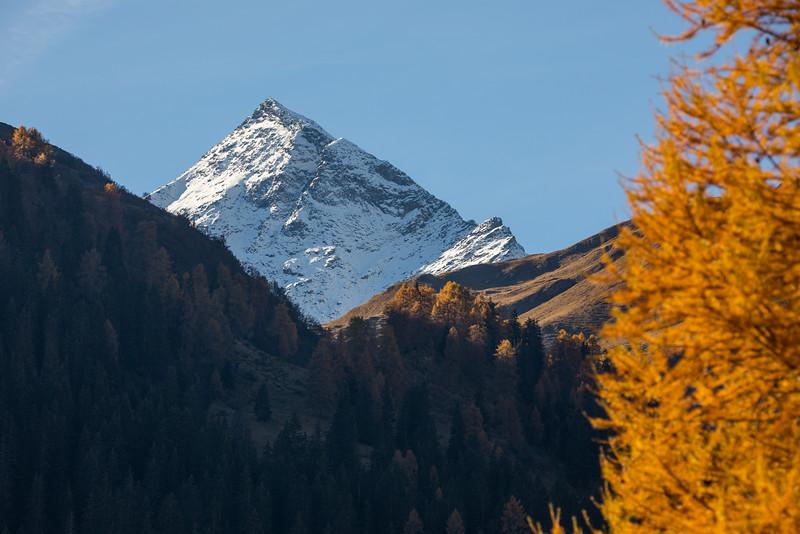 Herbst-im-Rheinwald--7.jpg