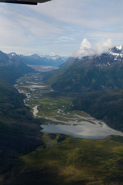 Alaska Icy Bay-3384.jpg