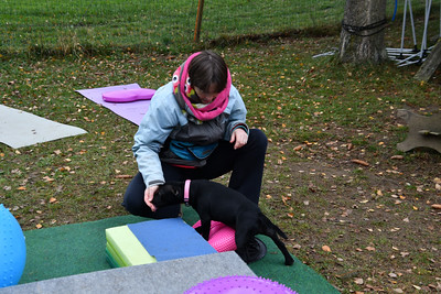 Cours Fitness Canin Proprioception - Groupe 2 - 10112018