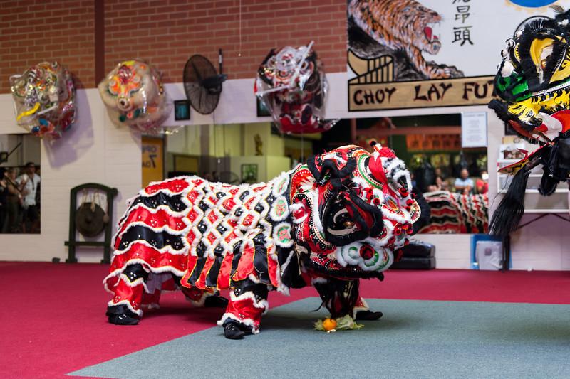 CNY 2014-55.jpg