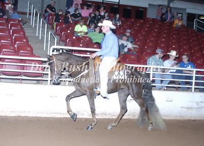 CLASS 67  PLEASURE HORSE STAKE