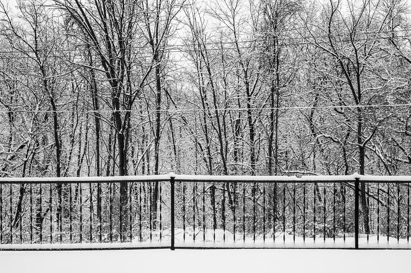 02-04-2021-winter-6.jpg