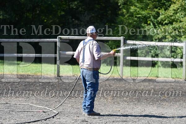 Horse Show 07-14-17