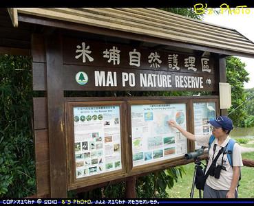 20100529 - Mai Po