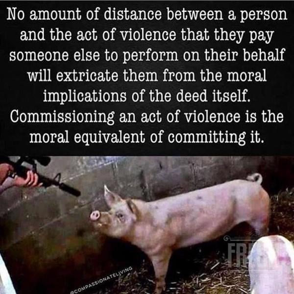 FreshGreenSmoothies_com-Vegans-Intelligent-Compassionate-raworganicvegan-4116.jpg