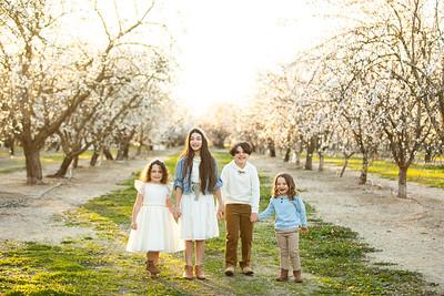 J Lapetina Family Almond Blossoms 2021