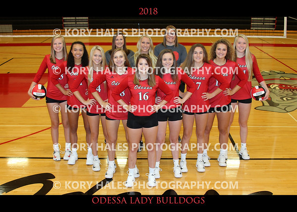 2018 OHS Volleyball
