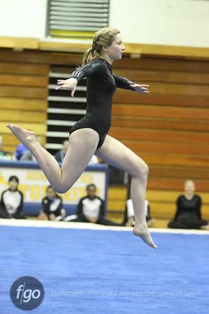Southwest v Henry-Edison Gymnastics 1-19-11