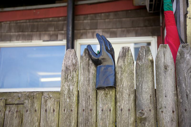 Cape Cod 2011 30.jpg