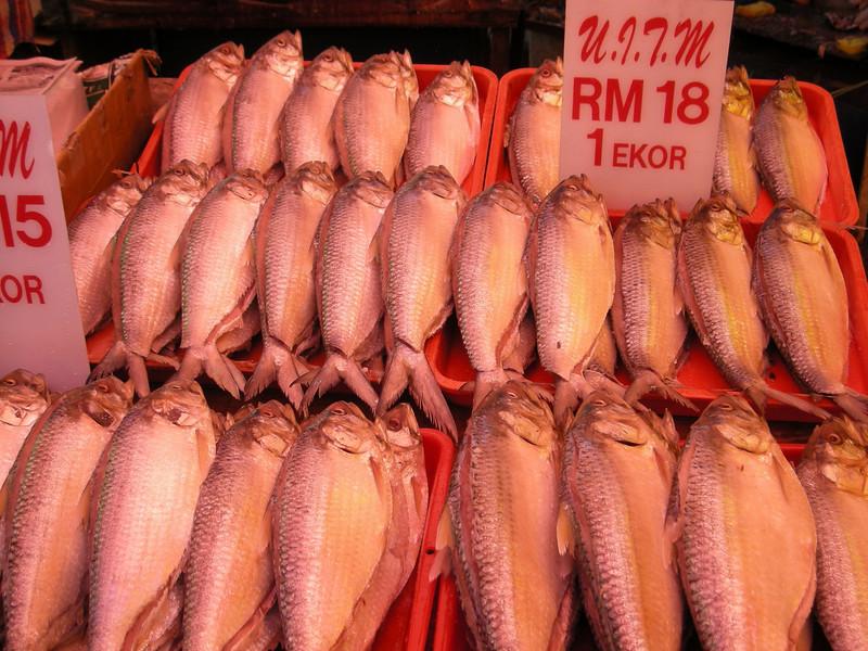 fresh fish...