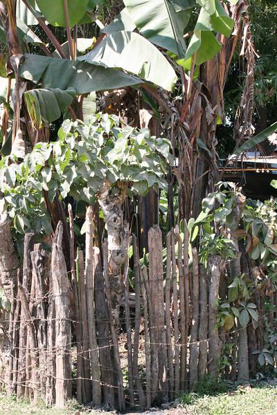 Guatemala 103.JPG