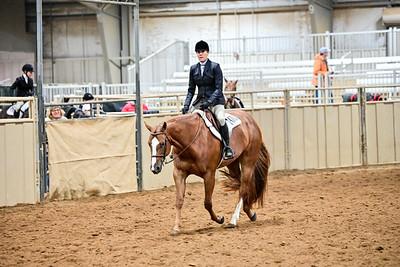 Amature Hunter Under Saddle