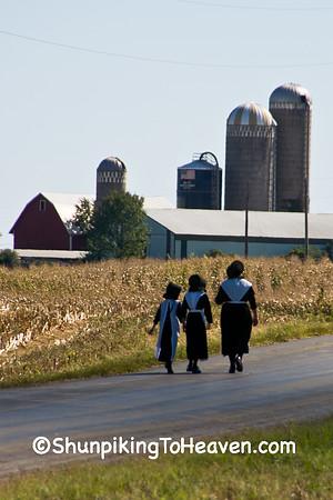 Amish Ways