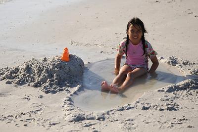 Fort Desoto Beach 2010