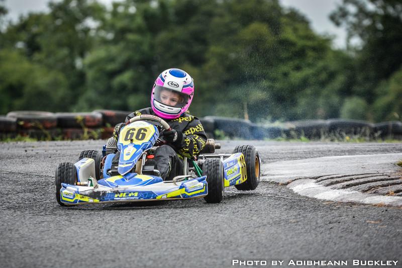 Leinster Karting Club - 2018 Summer Championship - Round 1 - By Aoibheann Buckley
