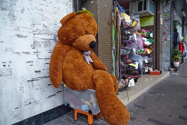 bear 熊