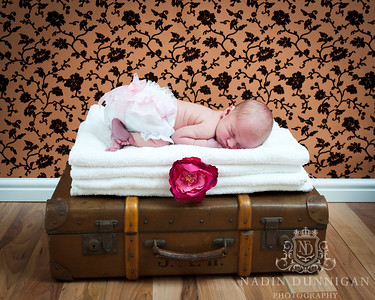 20120321 Baby Frankie NB