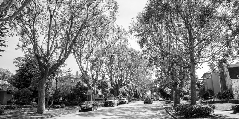 Saint Francis Wood - streetscape