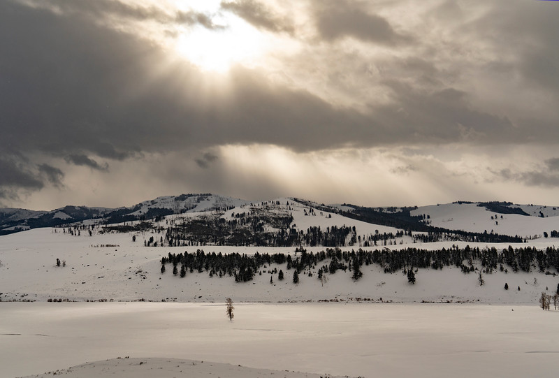 _AR70807 Sunbeams over Lamar Valley.jpg