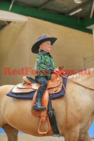 2014 03 01 WA Paint Horse State Championships LeadLine