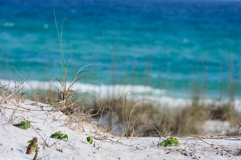 Topsail Beach-61.jpg