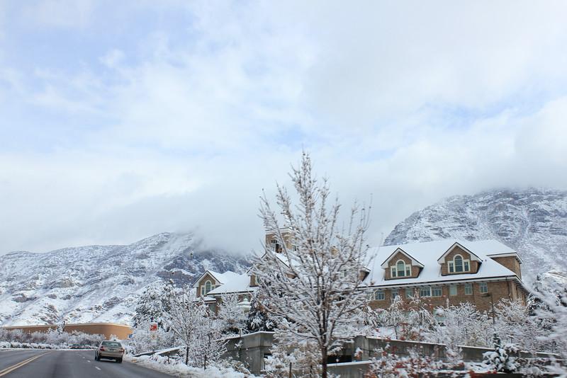 Snowy_Morning_11_10_2012_3325.JPG
