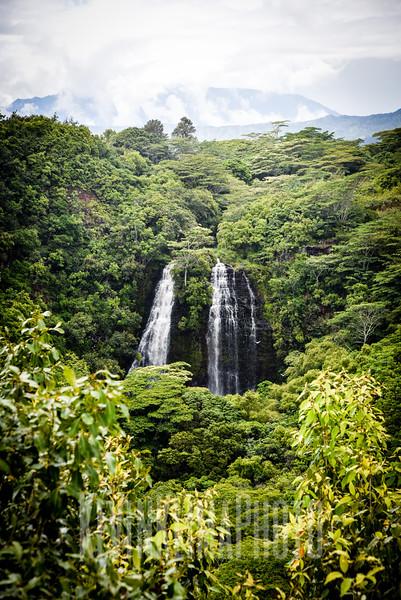 Kauai2017-138.jpg