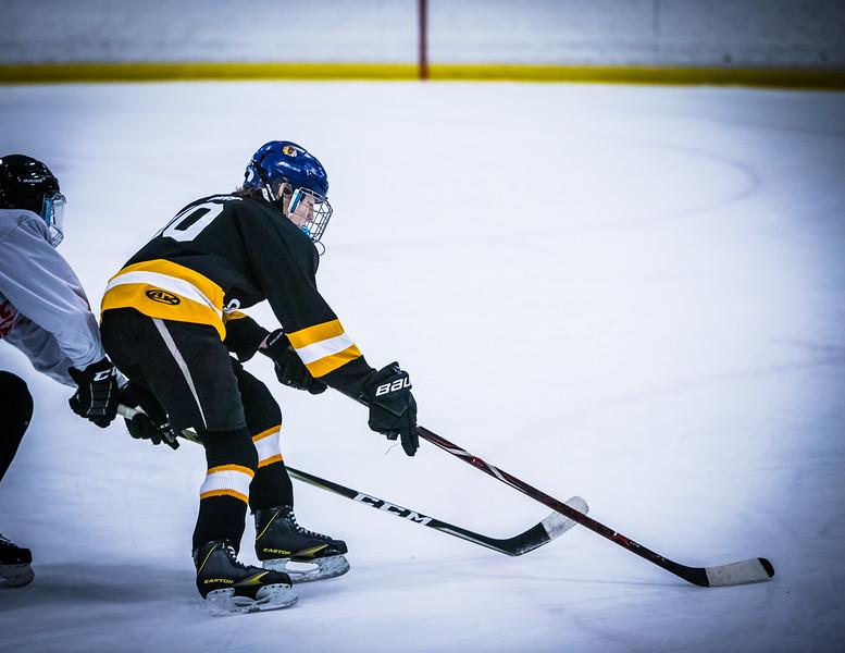 Bruins2-390.jpg