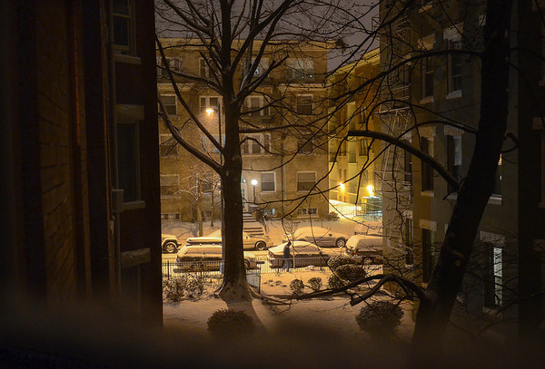 Snow in the 'hood 2014