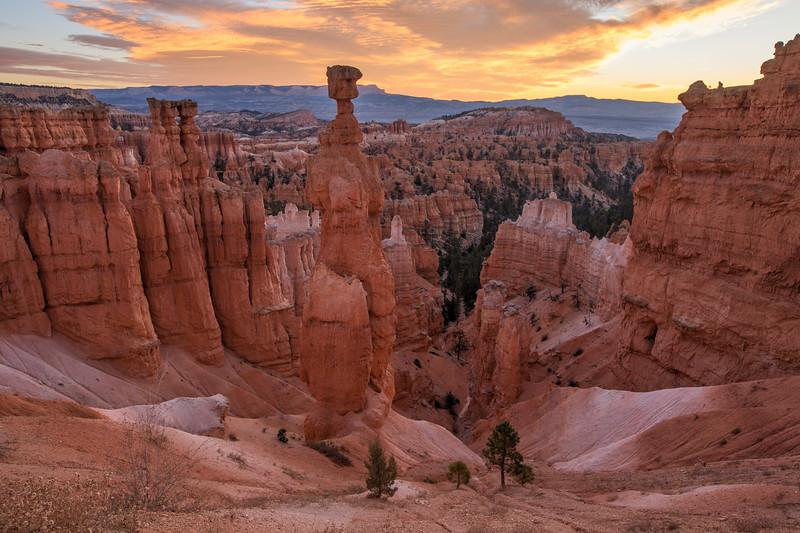WVWS_Bryce Canyon--5.jpg