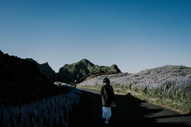Tu-Nguyen-Destination-Wedding-Photographer-Iceland-Elopement-Fjaðrárgljúfur-16-96.jpg