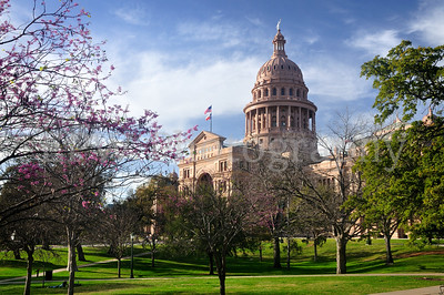 Texas Capitol Building 1