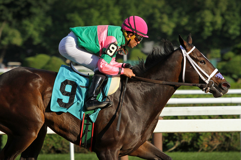 Sippican Harbor (Orb) and jockey Joel Rosario win a MSW at Saratoga Racecourse 8/12/18. Trainer: Gary Contessa. Owner: Lee Pokoik