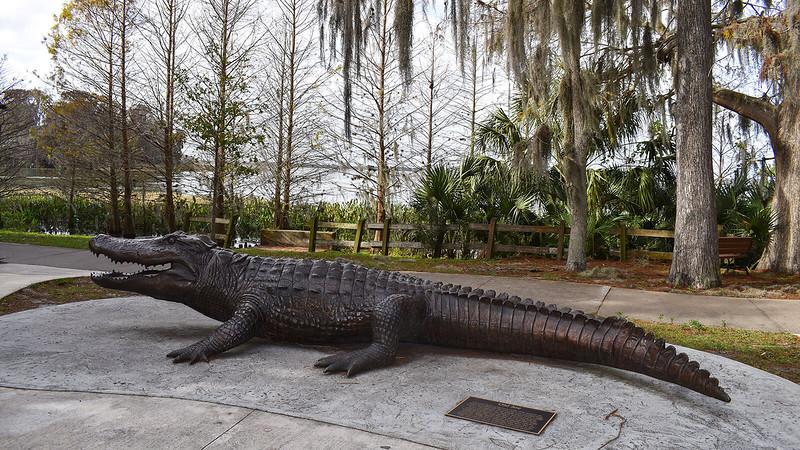 Bronze alligator statue called Old Joe
