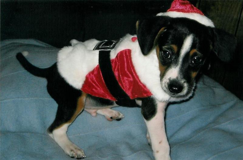 20- Santa Tucker (Miles)