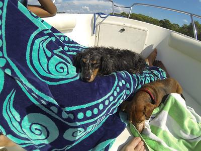 Trip To Punta Gorda Sep 2013
