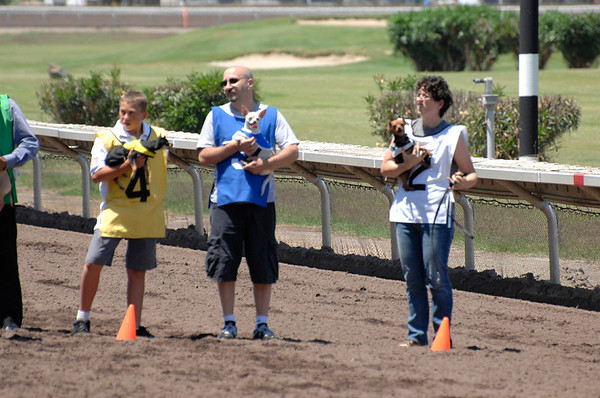 Derby Dog Dash July 2