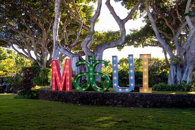 NVP Maui Leadership Meeting 2019