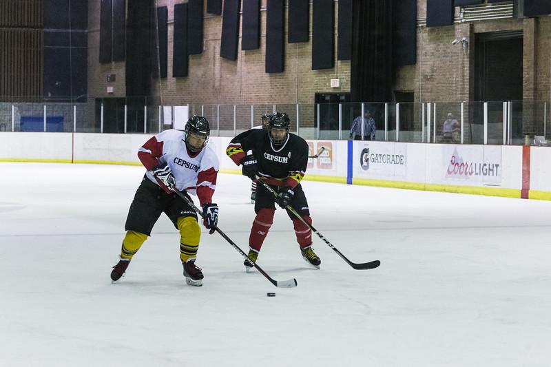 2018-04-07 Match hockey Thierry-0036.jpg