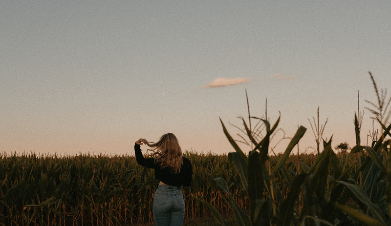 corn-23.jpg