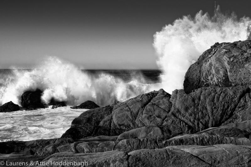 State Park Point Lobos near Carmel, california, USA  Filename: CE4001552-Carmel-CA-USA-Edit.jpg