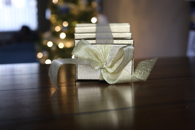 2019-12-22_ChristmasDecor-4419.JPG