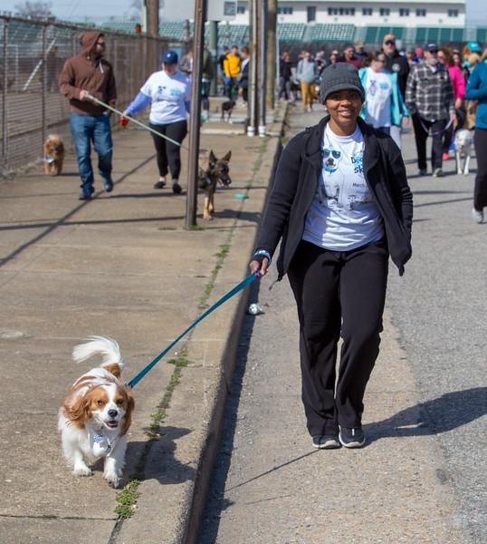 Richmond Spca Dog Jog 2018-787.jpg