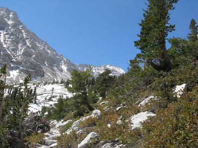 Lone Pine Peak via the SW chute, M Provisional