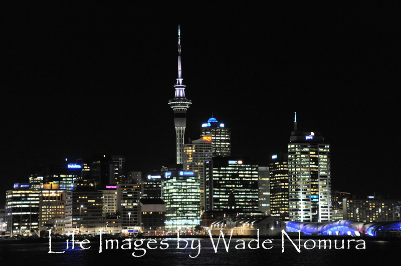 Auckland New Zealand Night Lights