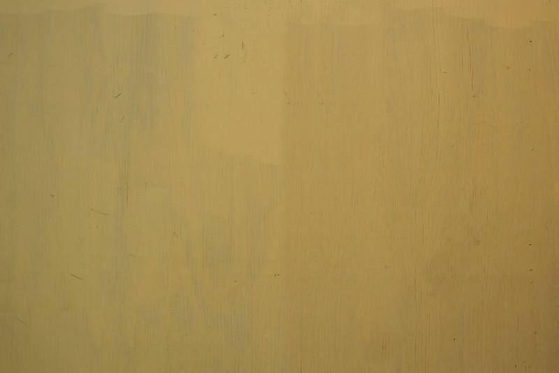 Wood BH5A8132.jpg